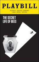 secret life of bees.jpeg